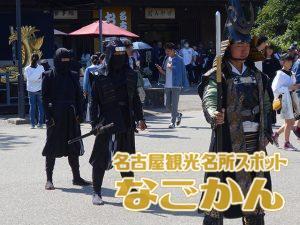 忍者隊(徳川家康と服部半蔵忍者隊)